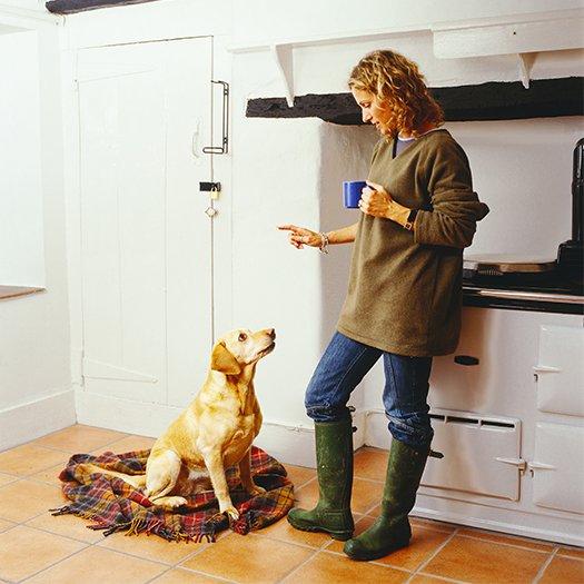 j'ai-envie-de-savoir-dresser-mon-chien