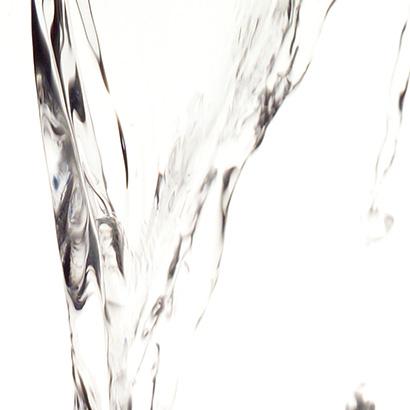 Fleurs de bach rock water