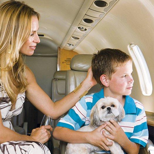 j'ai-envie-de-voyager-paisiblement-avec-mon-animal